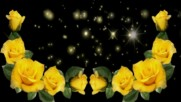 Обожавам жълти рози! ... ( Enrique Chia music) ...