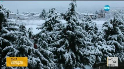 Заваля първият сняг