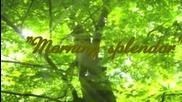 ~*~ Утринно великолепие! ... ...( Stamatis Spanoudakis music) .. ...~*~
