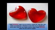 Buldoka_-_samo_ti_2o11_