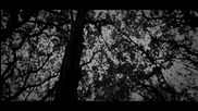 Ivana Selakov 2012 - Pobedicu bol Official Hd Video - Prevod