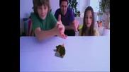 Playstation - Eyepet Trailer
