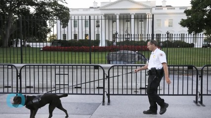 White House Fence Jumper Faces Jail