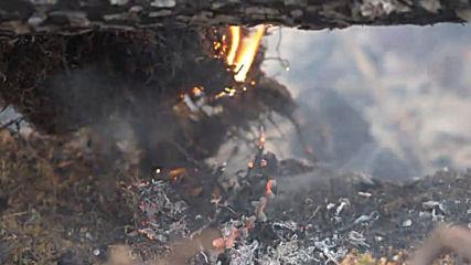 Русия: Битка с пожара в Сибир