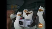 The Penguins of Madagascar - Haunted Habitat