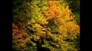 Вивалди. Годишните Времена – Есен