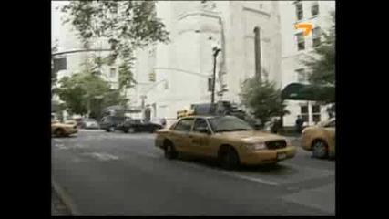Паун избяга от зоопарка в Ню Йорк