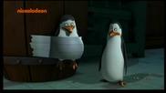 Пингвините От Мадагаскар Бг Аудио 19.06.2014 Цял Епизод
