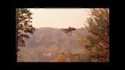 Freeride и Downhill