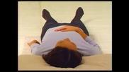Osho Everyday Meditation