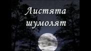 Tose Proeski Tajno moja - Тайно моя Превод ( H Q )