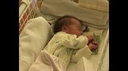 Обезпокоително: Майки масово изоставят рожбите си