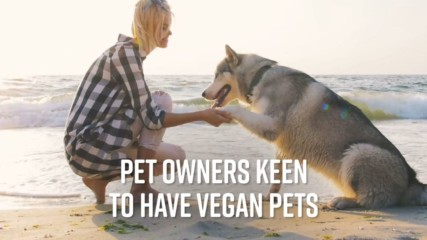Here's why your pet shouldn't go vegan