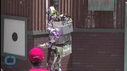 Robots Lose Balance in LA Challenge