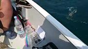 Такъв улов на риба е мечта на всеки рибар!