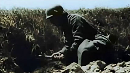 Wehrmacht Combat Footage in Color