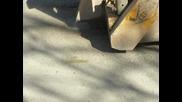 Hypersegment *диск за рязане на асфалт*