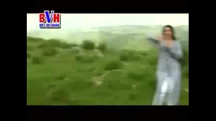 Shah Sawar and Naseebo Lal Pashto New Song (spelani Zanta Har Wakht Logiy).2012