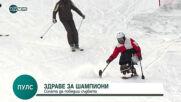 """""""Пулс"""": Първият българин, който кара ски в инвалидна количка"""