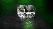 David Guetta feat. Sia - She Wolf (falling To Pieces) (exten