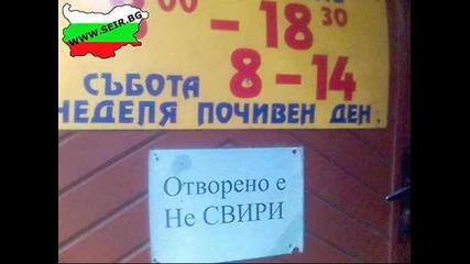 nie Bulgarite
