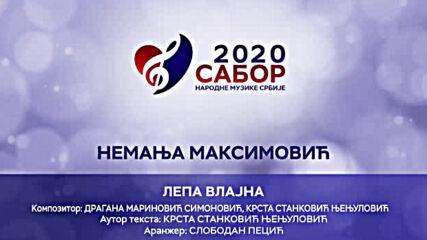 Nemanja Maksimovic - Lepa Vlajna Sabor narodne muzike Srbije 2020.mp4