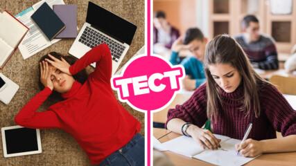 ТЕСТ: Можеш ли да се справиш с въпросите от изпита по български език за след 7 клас?