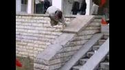 Freerun - Crazy Jump