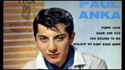 Пол Анка - Влудяваща любов (превод)