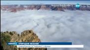"""Гранд Каньон се """"напълни"""" с облаци"""
