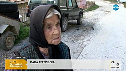 Вълци тормозят цяло село, местните се страхуват за живота си