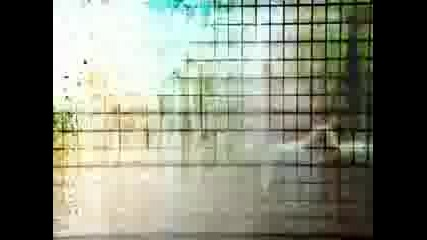 Catscan - Design the Future (moh 07 03 2009 anthem)