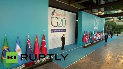 Turkey: Putin greeted by Erdogan as G20 summit gets under way