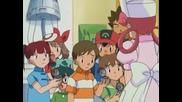 350 Pokemon Hokey Pokeballs