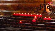 """Църквата """"Свети Карл"""": барок и мистерии в едно"""