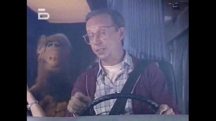 Alf.1x11
