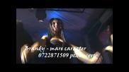 Brandy - Mare Caracter / Bani Bani /