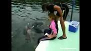 Делфин Се Възползва От Мацка :d !!!
