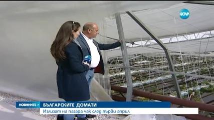 Българските домати на пазара след 1 април