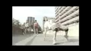 David Guetta Vs The Egg - Love Don t Let Me Go - dvdrip - Xvid - Dbl Cd 1