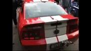 Ford Mustang Със Софийски Номер!
