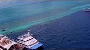 Още Едно Чудо - Големият Бариерен Риф