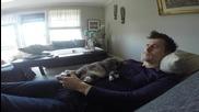 Котка не позволява на стопанина си да играе на видео игри