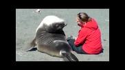 Понякога е по-лесно да се сприятелиш с животно отколкото с човек