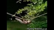 Гладната катерица
