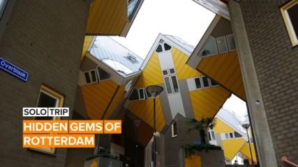 Solo Trip: The Hidden Gems Of Rotterdam