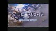 Дивата Русия - Великата граница