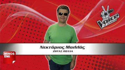 Nektarios Mallas Zitas polla