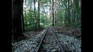 Умален модел на американски влак в гората