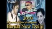 Bernat 2010 new